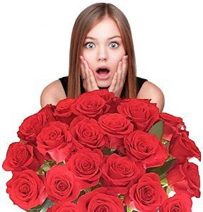 Impress Her With 25 GIANT, RED (Or Choose Color) Incredibly Fragrant Long Stem Roses, Top Rated Roses On Amazon from Spring in the Air Luxury Roses See more at: http://foodiegiftsnow.com/grocery-gourmet-food/flowers-for-delivery-impress-her-with-25-giant-red-or-choose-color-incredibly-fragrant-long-stem-roses-top-rated-roses-on-amazon-from-spring-in-the-air-luxury-roses-plus-a-free-gift-message-will-wow-y/#sthash.Tyfso8VR.dpuf