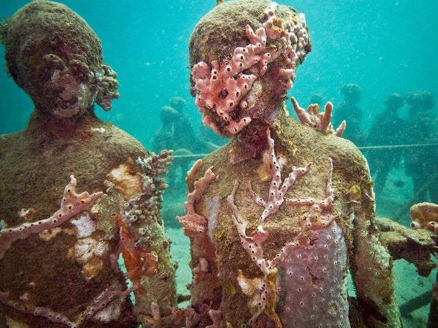 Best scuba diving sites in the U.S. and Caribbean via @USATODAY
