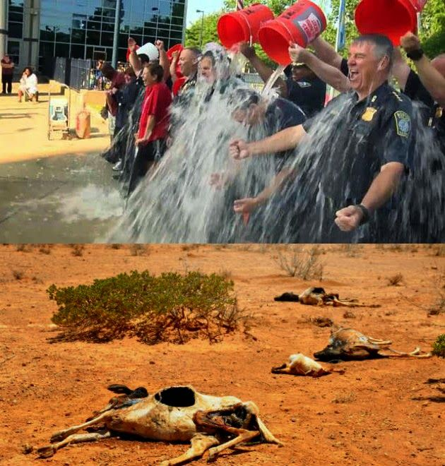 Día 129 : El Desperdicio de agua