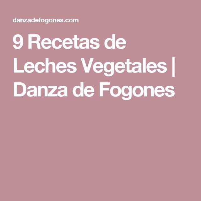 9 Recetas de Leches Vegetales | Danza de Fogones