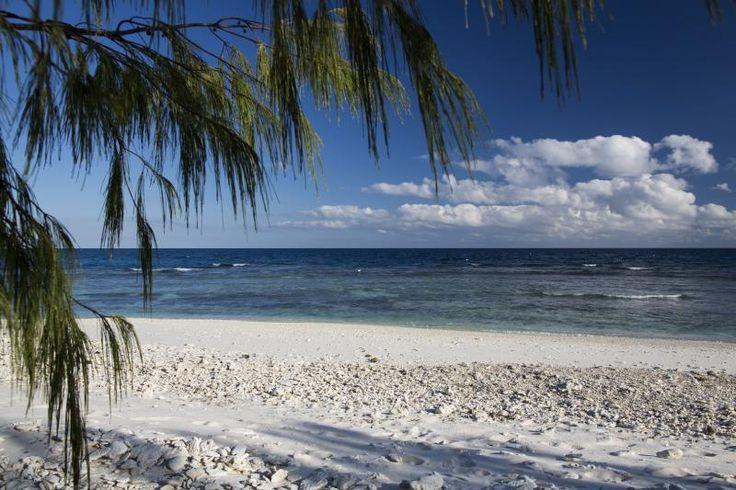 Packages | Lady Elliot Island Eco Resort Great Barrier Reef