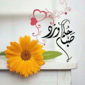 صباح الخير حبيبتي صباح الخير حبيبي مجلة رجيم Beautiful Morning Messages Good Morning Arabic Morning Greeting