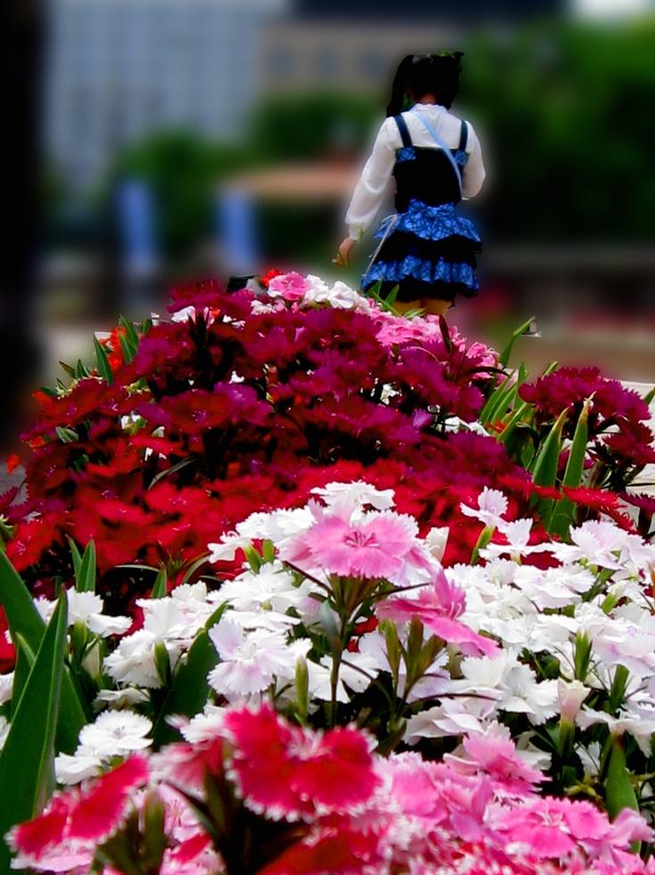 Spring has come.