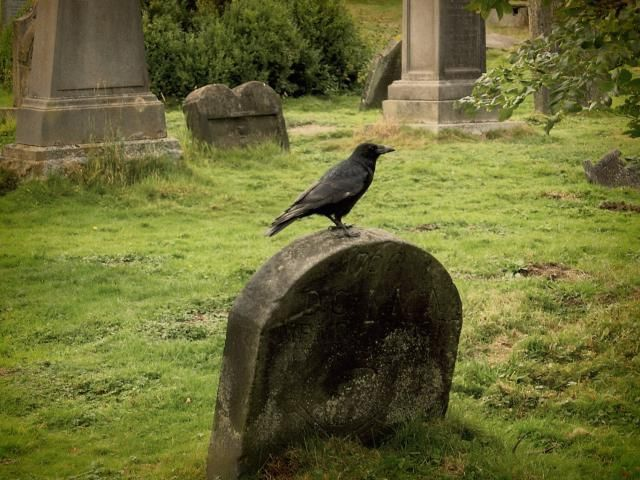 Hold a Samhain Rite to Honor the Forgotten Dead: Take a moment at Samhain to remember those who have been forgotten.