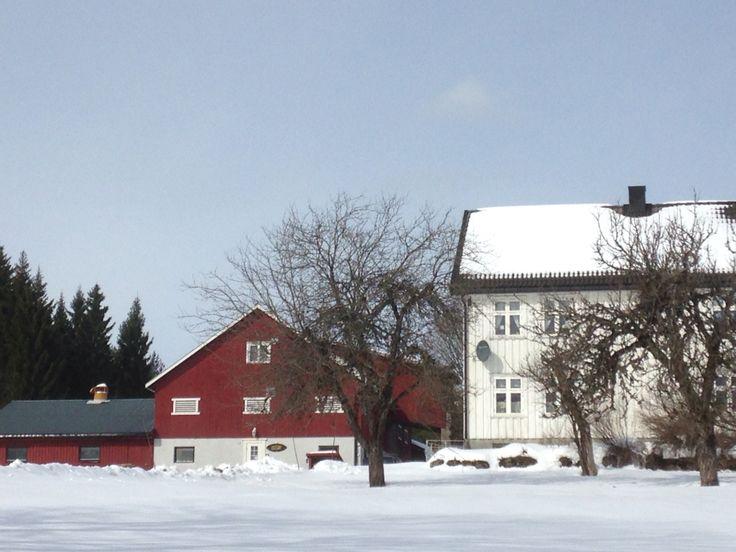 Winter at the farm.