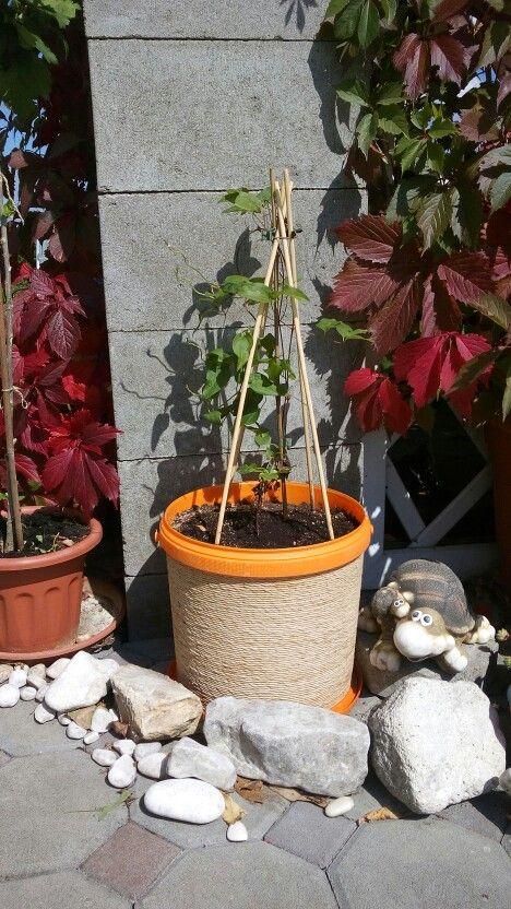 Květináč z kbelíku