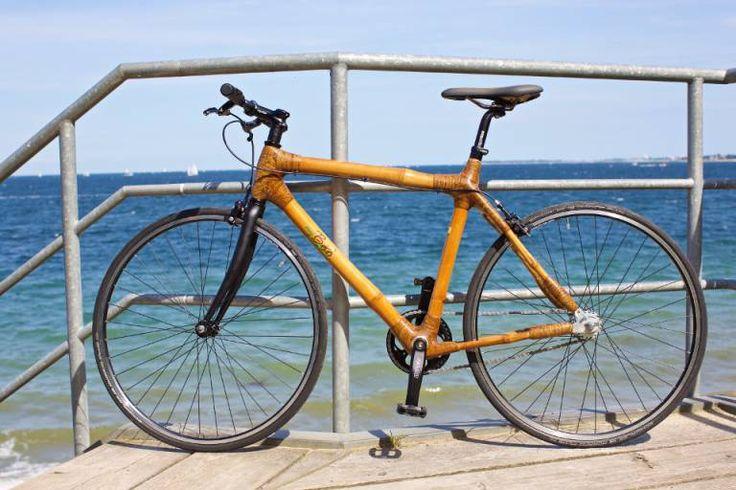 my Todzie - my Boo | Bambus Fahrrad, Fahrräder – Kiel, Deutschland
