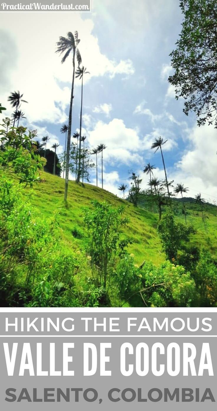 The Valle de Cocora hike in Salento, Colombia is famous for its 200 foot tall wax palms. What people don't tell you is that the hike also includes an uphill trek through deep, thick mud in a rainy cloud forest!