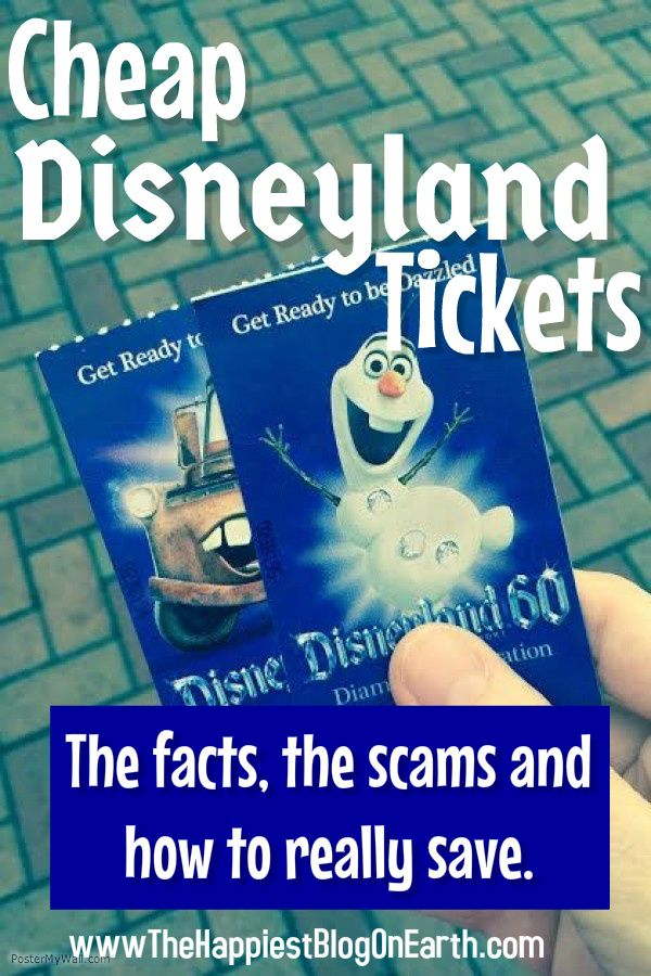 Every Disney fan loves Disney tickets for birthdays, Christmas, anniversaries and every day just because.
