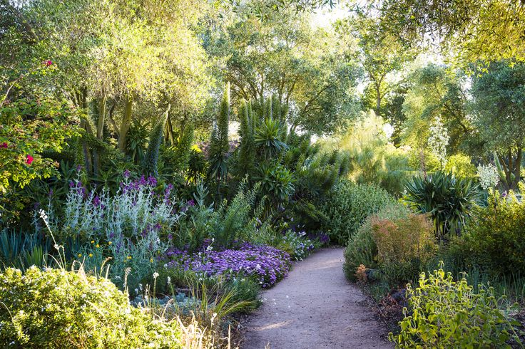 Path at Lambley Nursery, Victoria, Australia