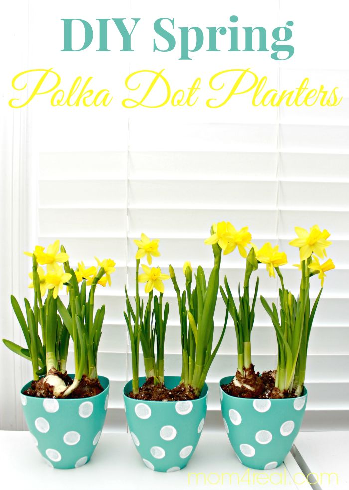 Pretty Polka Dot Flower Pots Craft Idea