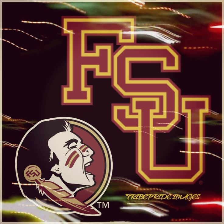 Fsu Football Wallpaper: 17 Best Images About Florida State Seminoles On Pinterest
