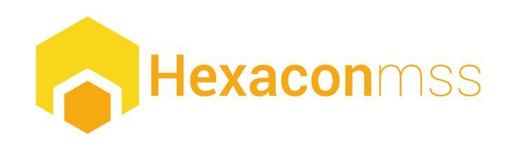 Webbanner für Hexacon-mss www.hx-bern.com