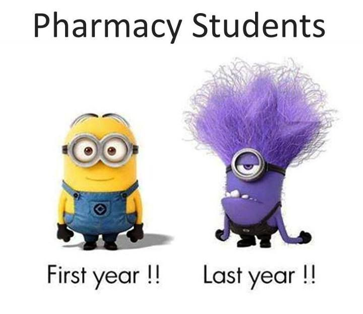 Pharmacy students. I can only imagine...