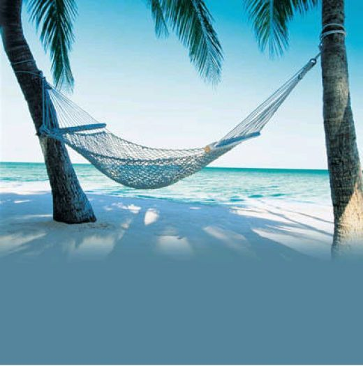 Hammocks: Beaches, Buckets Lists, Favorite Places, Lotto Ticket, Hammocks, Quote, Funny Stuff, So True, Lottery Ticket