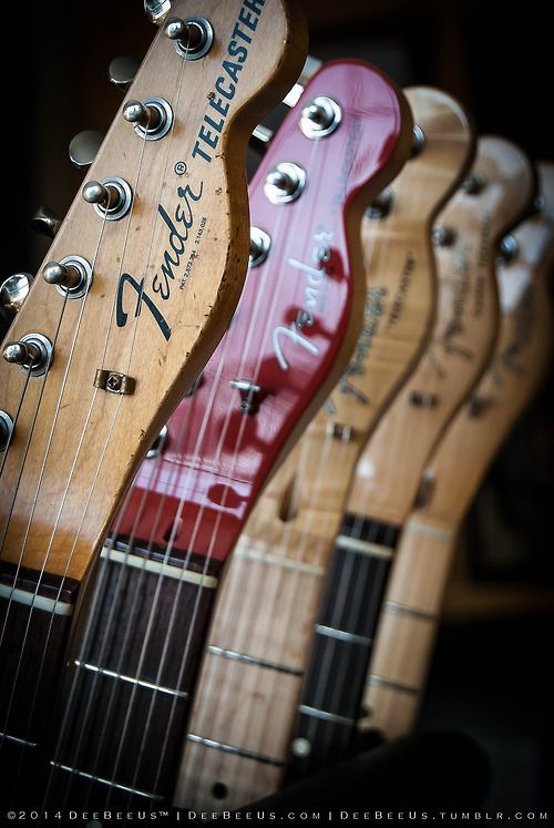 deebeeus:  The only thing I want for Valentine's Day is a bouquet of Telecasters. (left to right:  Custom Shop '67 Relic, American Standard ...