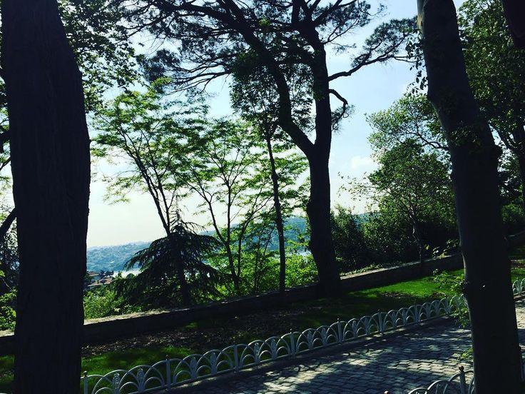 """En güzel mutfak paylaşımları için kanalımıza abone olunuz. http://www.kadinika.com """"Bir tablo"""". #ağaç #ağaçlar #tree #trees #gökyüzü #yol#sky #mavi #yeşil #güzel #tablogibi #bunuseviyorum #hayatburada #istanbulda1yer #mutfakgram"""