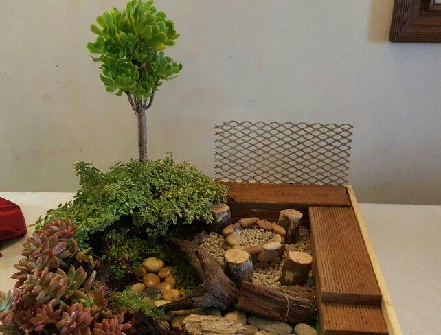 Miniature garden created for flower talk by Barbara Eke Designs