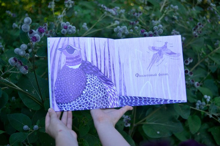 "Children's book ""Rainbow"" Author: Polina Smirnova Purple."