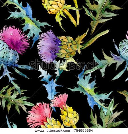 Stock Photo: Wildflower thistle flower pattern in a watercolor style. Full name of the plant: thistle. Aquarelle wild flower for background, texture, wrapper pattern, frame or border. -