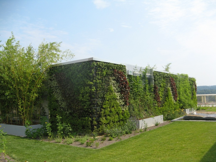 A beautiful green wall on the roof garden of Community Health Center, Connecticut where both patients and employees will be able to enjoy it through the Spring, Summer and Fall.