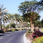 Project Name - Arabian Ranches Development - District 3A  Project Description . The works comprise of supply, installation, testing and commissioning of Soft landscaping & Irrigation Works complete and remedying of any defects.