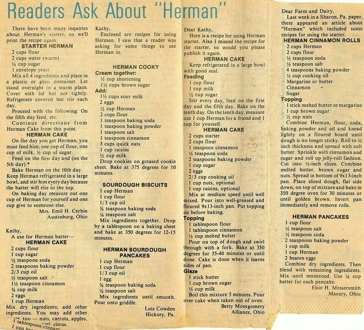Herman starter recipe