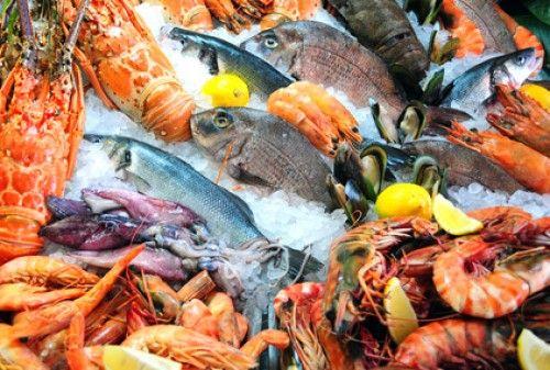 Mořské plody v kuchyni 1. část - krevety a humr
