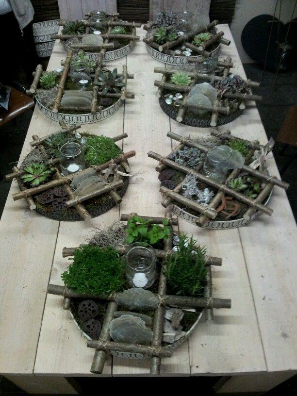 Plantenarrangement voor op de tuintafel