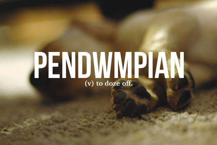 14 Brilliant Welsh Words Everyone Needs To Start Using