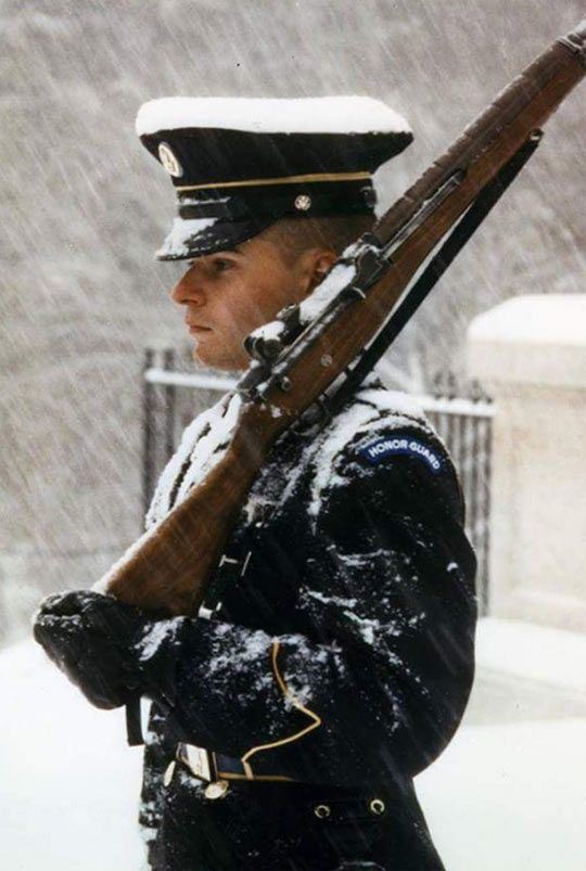 Guards At The Tomb Of The Unknown Soldier, Standing Fast During A Superstorm - The Meta Picture