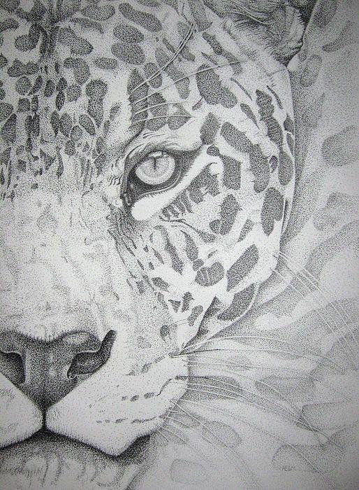 Jaguar Pointillism Print By Mayhem Mediums