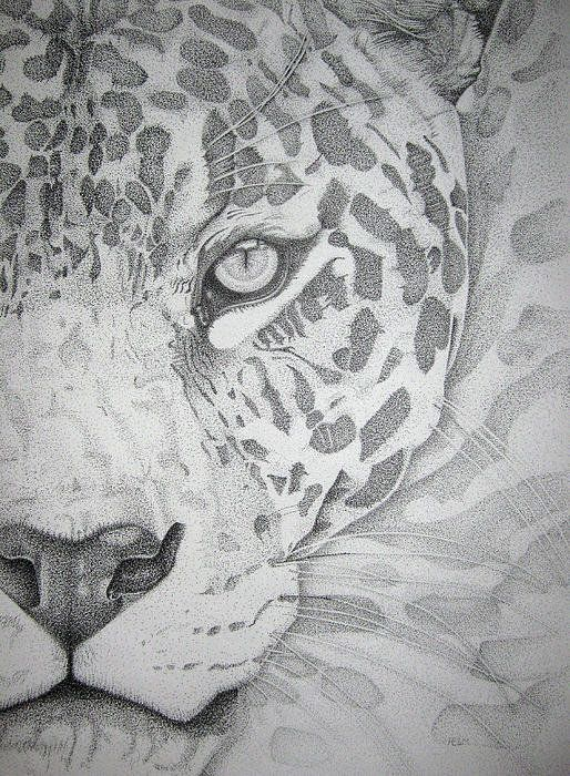 Jaguar Pointillism Print By Mayhem Mediums
