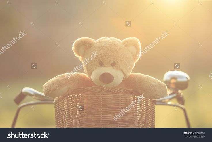 Close Up Lovely Brown Teddy Bear In Rattan Basket On Red Vintage Bike In Green…