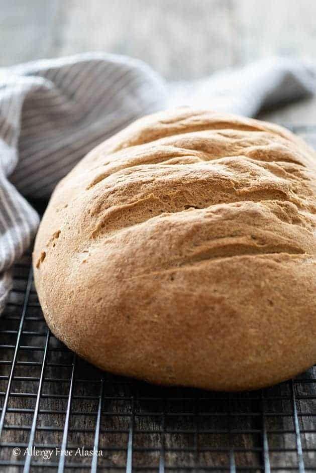 Artisan Gluten Free Bread Allergy Free Alaska Recipe In 2020 Gluten Free Bread Gluten Free Recipes Bread Vegan Sandwich
