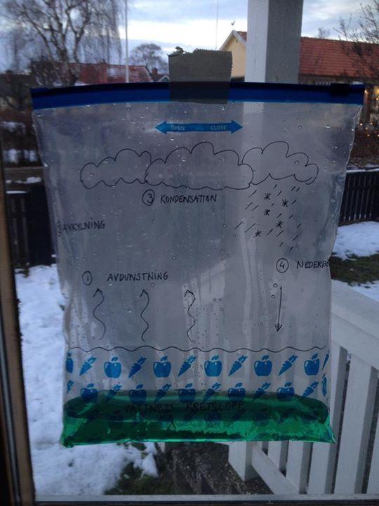 vattnets kretslopp, häng upp på fönstret