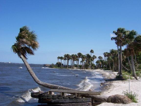 Palm bay hook up