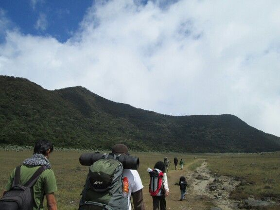 Hiking on Mount Gede Pangrango. Stunning!!