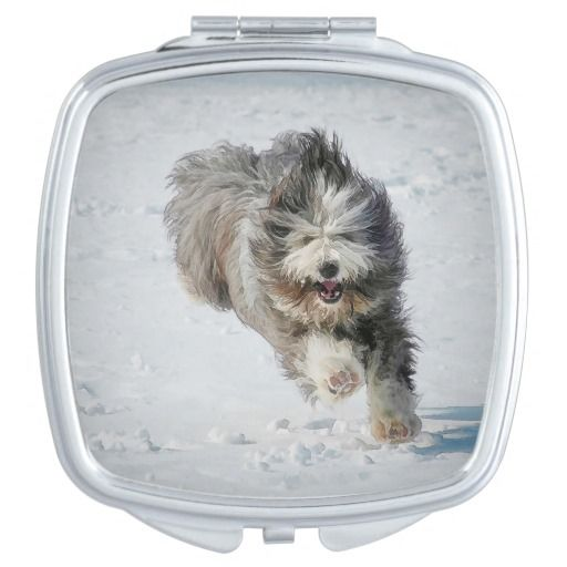 Square Compact Mirror Bearded collie Luka running in the snow
