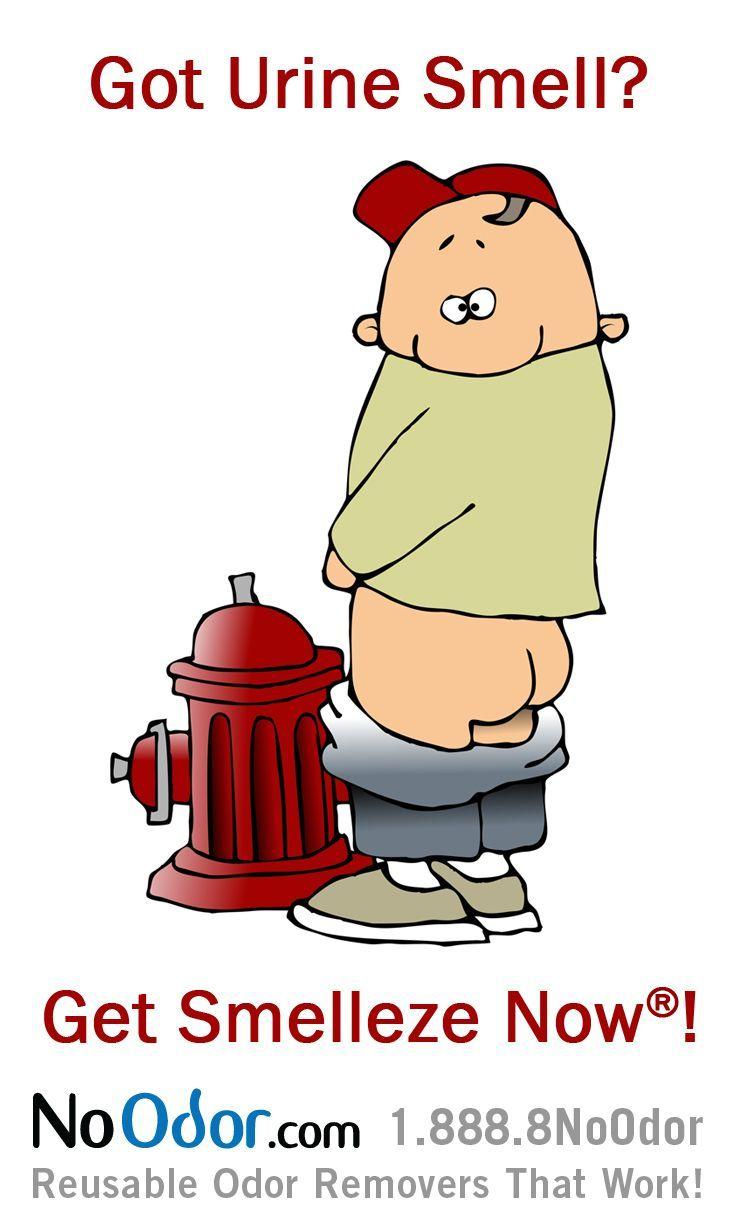 Smelleze® Reusable Bathroom Smell Remover Rids Bathroom Odor Without  Harmful Coverupu0027s. Itu0027s Reusable,