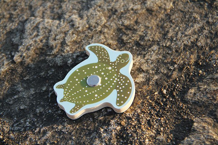 La tortue de mer fait partie des différentes espèces que l'on peut trouver dans le Jeu de Pêche tropicale Djeco. Venez découvrir les autres poissons sur notre site www.jeujouet.com/djeco #TortueDeMer #JeuDePêche #Djeco