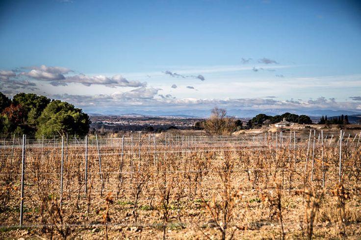 Montagnac à Montagnac, Languedoc-Roussillon