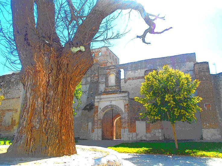 Olma e Iglesia de San Andres