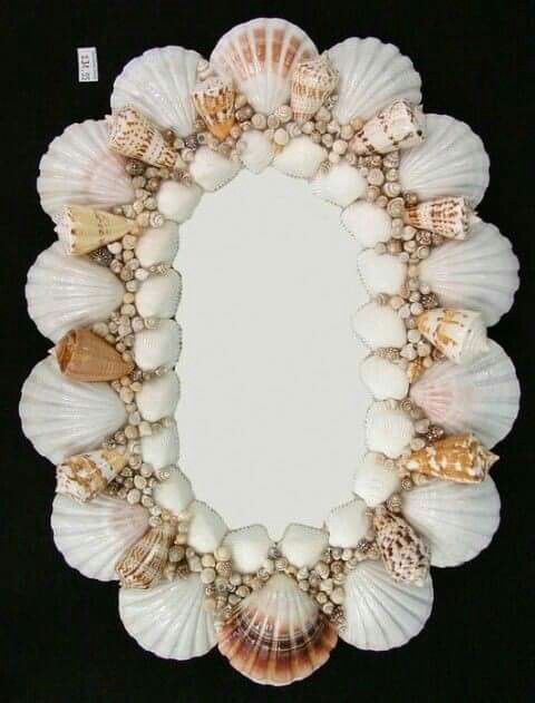Shell picture or Mirror frame