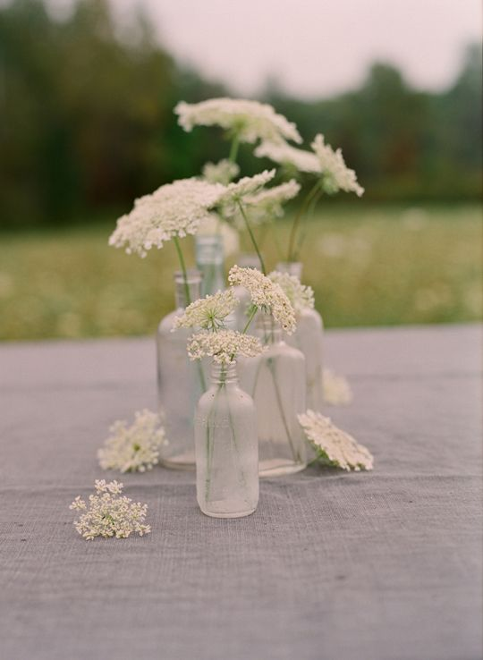 queen anne's lace and antique bottles