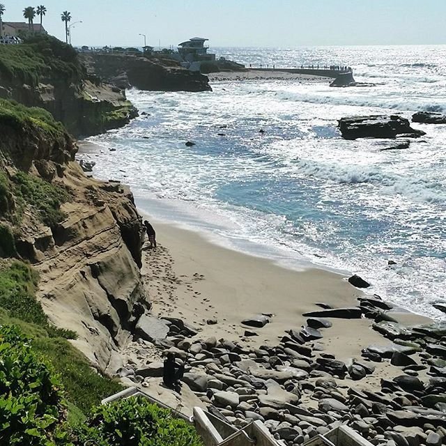What a nice walk in La Jolla between La Jolla cove and children's pool! Amazing cliffs, Amazing proximity with sea lions, seagulls and so on... Definitely worth a visit ! #lajolla #sandiego #usa #us #california #cali #landscape #cliffs #seagull #sea #pacific #surf #trip #traveller #worldtraveller #onlycali #lajollalocals #sandiegoconnection #sdlocals - posted by Flo  https://www.instagram.com/_flobarthel_. See more post on La Jolla at http://LaJollaLocals.com