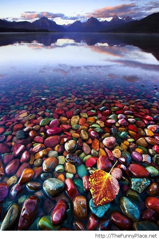 Pebble Shore Lake, Montana USA