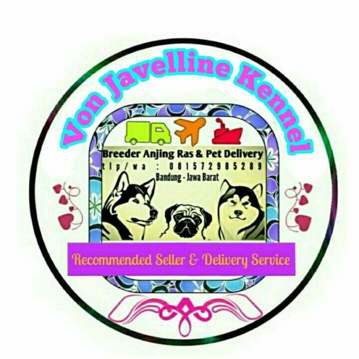 Von Javelline Kennel Von Javelline Pet Delivery   Stok anjing ras yang ada Chihuahua Shitzu  RTP Siberian Husky (wrna black and white, silver, coklat)  Alaskan Malamute  Chowchow  Golden Retriever  Herder Mini Pom Pug  American Bully   Beagle  Utk keterangan lbh lnjt silahkan kontak nomor Whatsapp atas nama Anni 081572985289 atau PIN BBM 51A22388  FB :  www.facebook.com/VonJavellineKennel  Web :  breederanjingras.blogspot.co.id vonjavellinekennel.wordpress.com  IG von_javelline_kennel