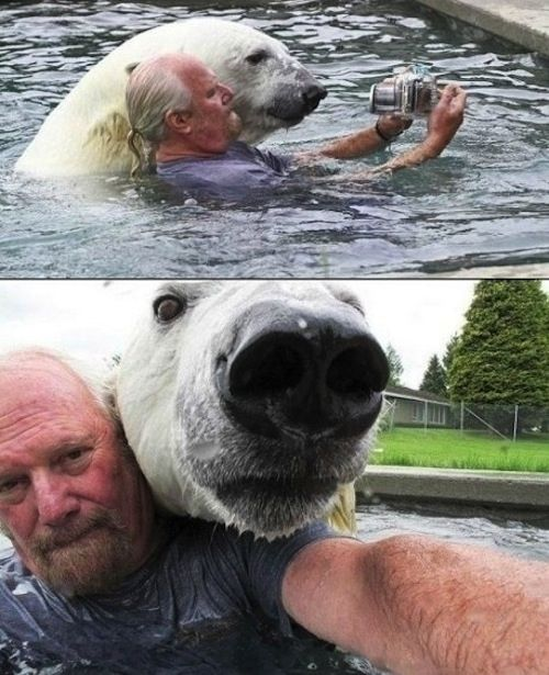 This dude and his polar bear selfie. | The 49 Most WTF Pictures Of People Posing WithAnimals