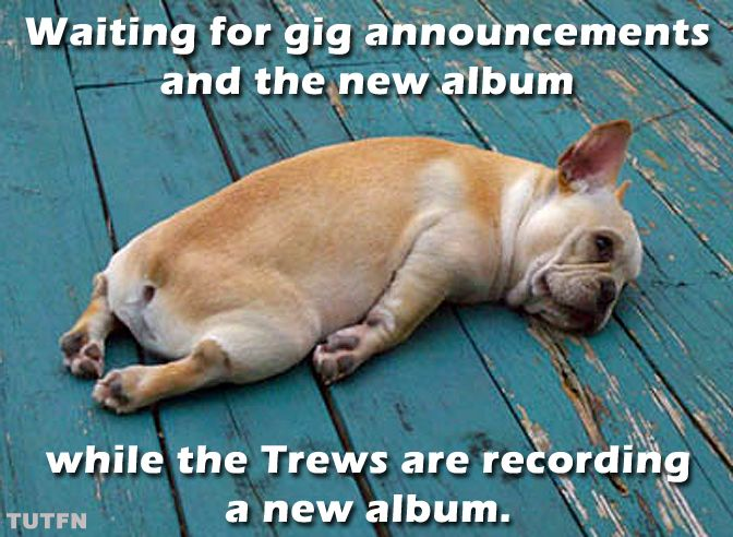 The struggle is real for Trews' fans...right?